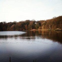 jezioro latem